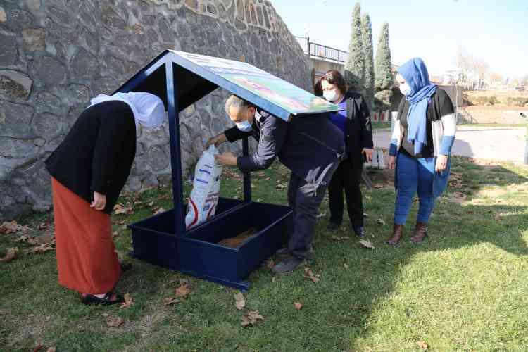 Çınar'da Sokak Hayvanları İçin Su ve Mama Kapları Bırakıldı